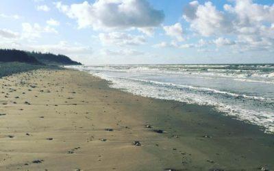 #Humeur – L'appel de la Mer(e)