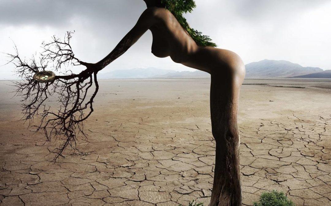 #Humeur : La Femme sauvage