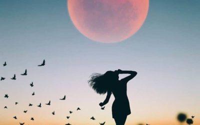#Poésie – L'éveil du féminin